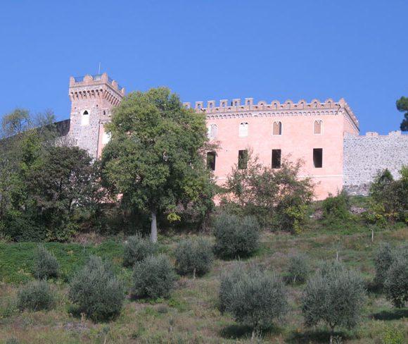 Castello dei Maltraversi 03